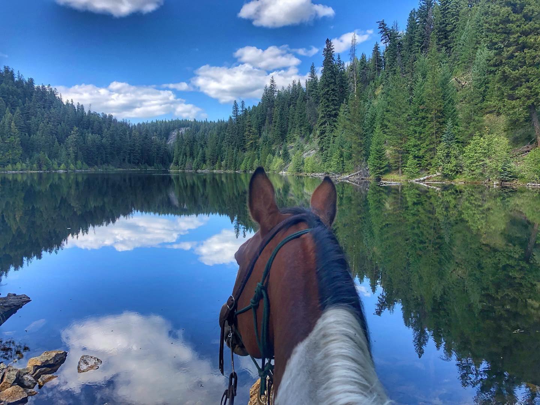 volunteer with horses, volunteering, volunteer, hospitality exchange, free accommodation, horses, ranch, farm, horsemanship, riding a horse, Canada